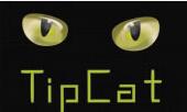 TipCat掌玩互娱